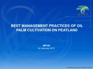 thumbnail of 3- MPOB's Guidelines for Oil Palm on Peat (Tarmizi)