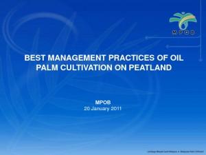 thumbnail of 3- MPOB's Guidelines for Oil Palm on Peat (Tarmizi)