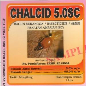 chalcid