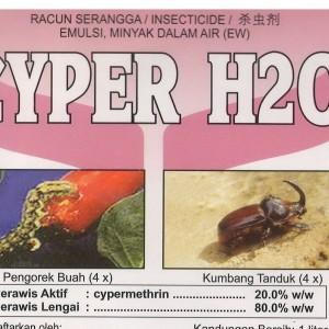 cyper h20