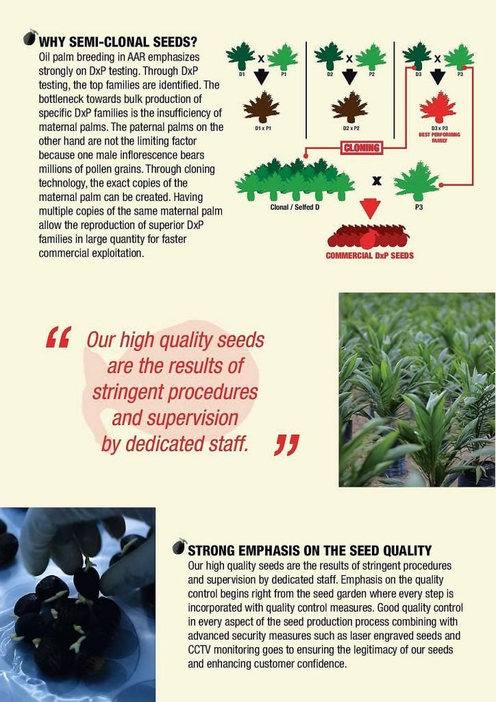 semi clonal seeds 1-page-003