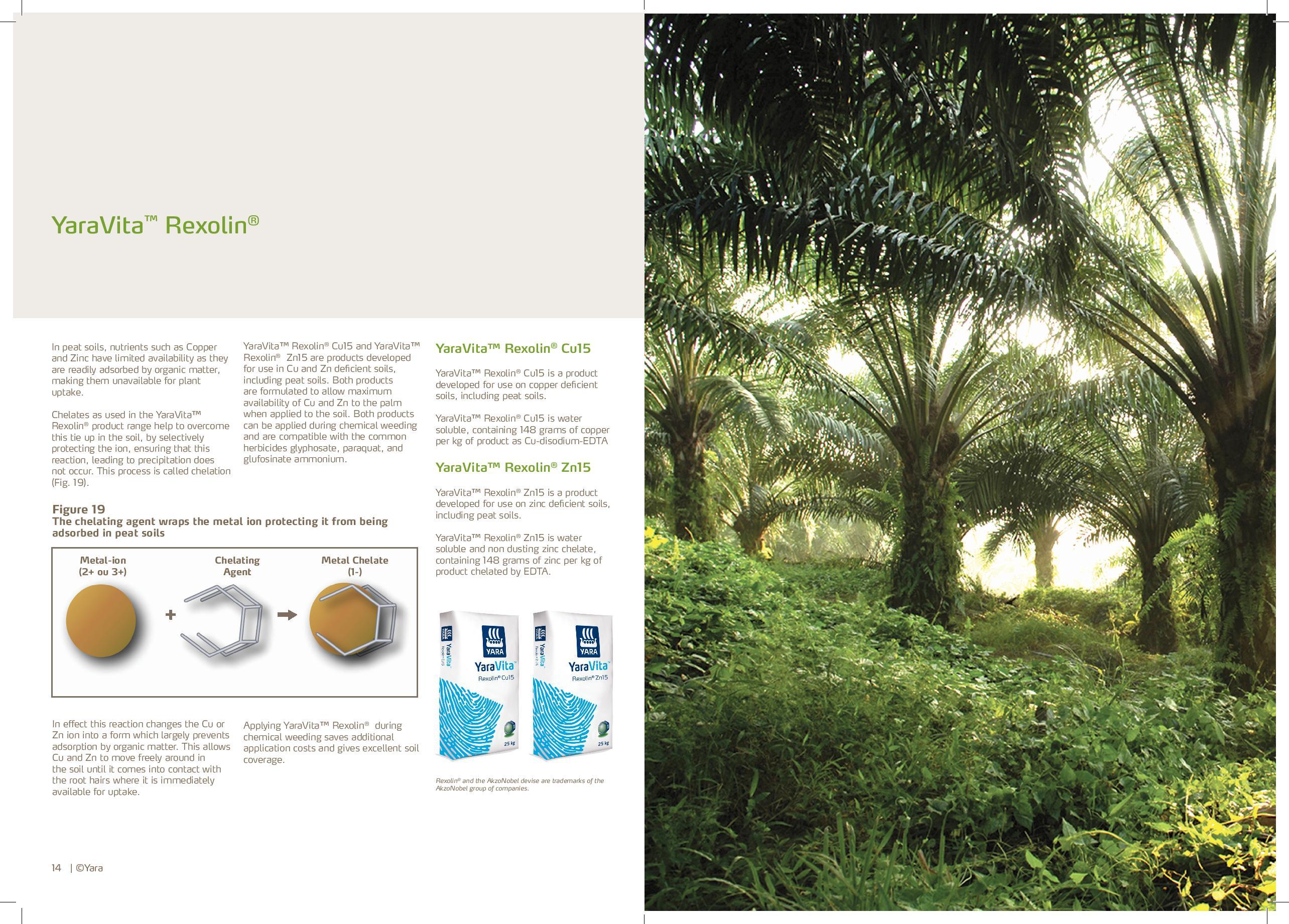 YARA-Oil Palm Nutrition | One Oil Palm