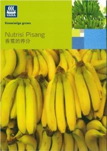 thumbnail of Nutrisi Pisang (香蕉的成分)