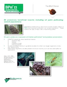 thumbnail of dipel-oil-palm-technical-bulletin-ag-5443