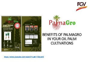 thumbnail of 4.PalmaGro  Oil Palm (Noor Hisham Hamid)