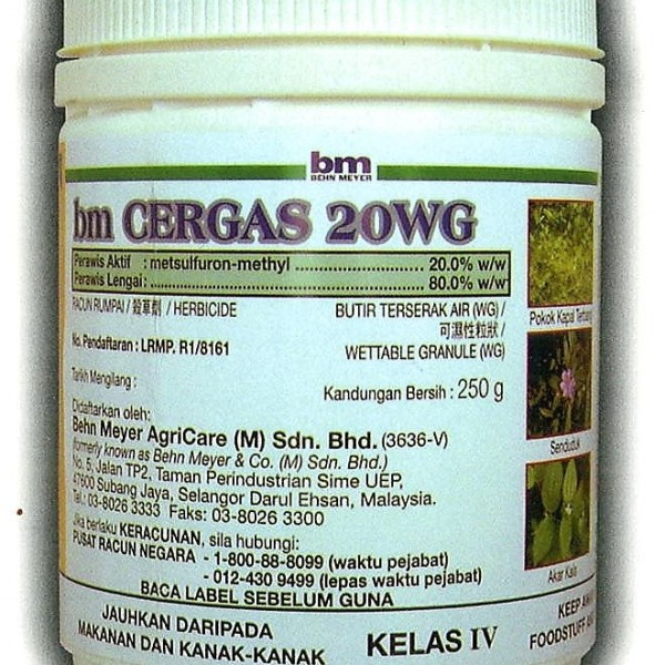 CERGAS 20WG – 1