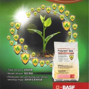 BASF Polyram 1